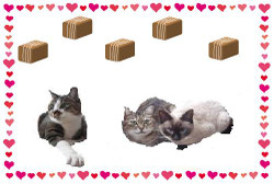 Valentine_card_frame_yoko_3
